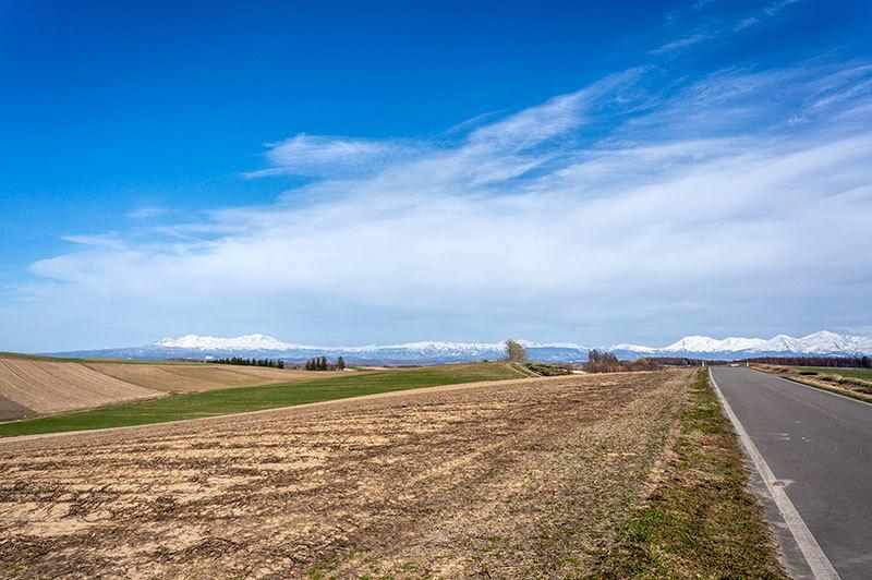 丘に春が来た_c0033513_20531229.jpg