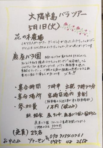 薔薇の季節ですネ---薔薇のイベント2つご案内_b0137969_06050997.jpg