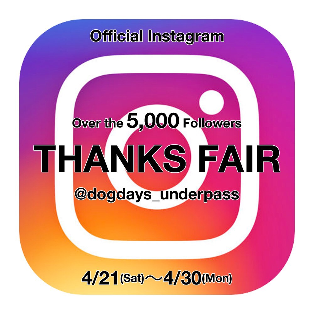 OFFICIAL Instagram 5,000 Followers THANKS FAIR_f0020773_198268.jpg