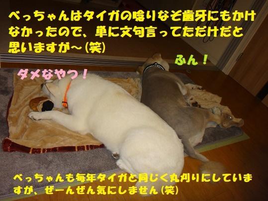 f0121712_08283478.jpg
