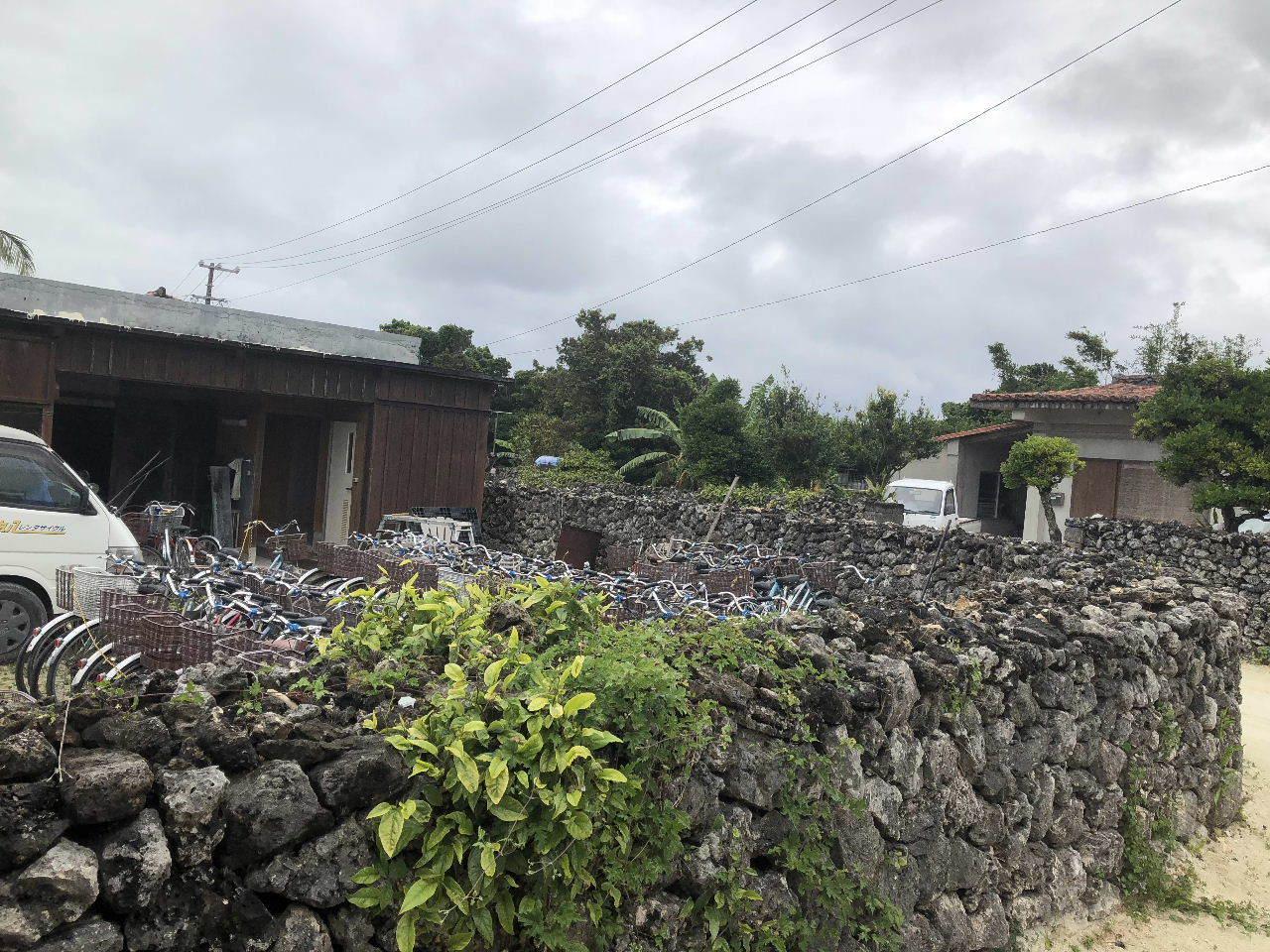 竹富島観光  水牛車でのんびり観光_c0011649_04313080.jpg