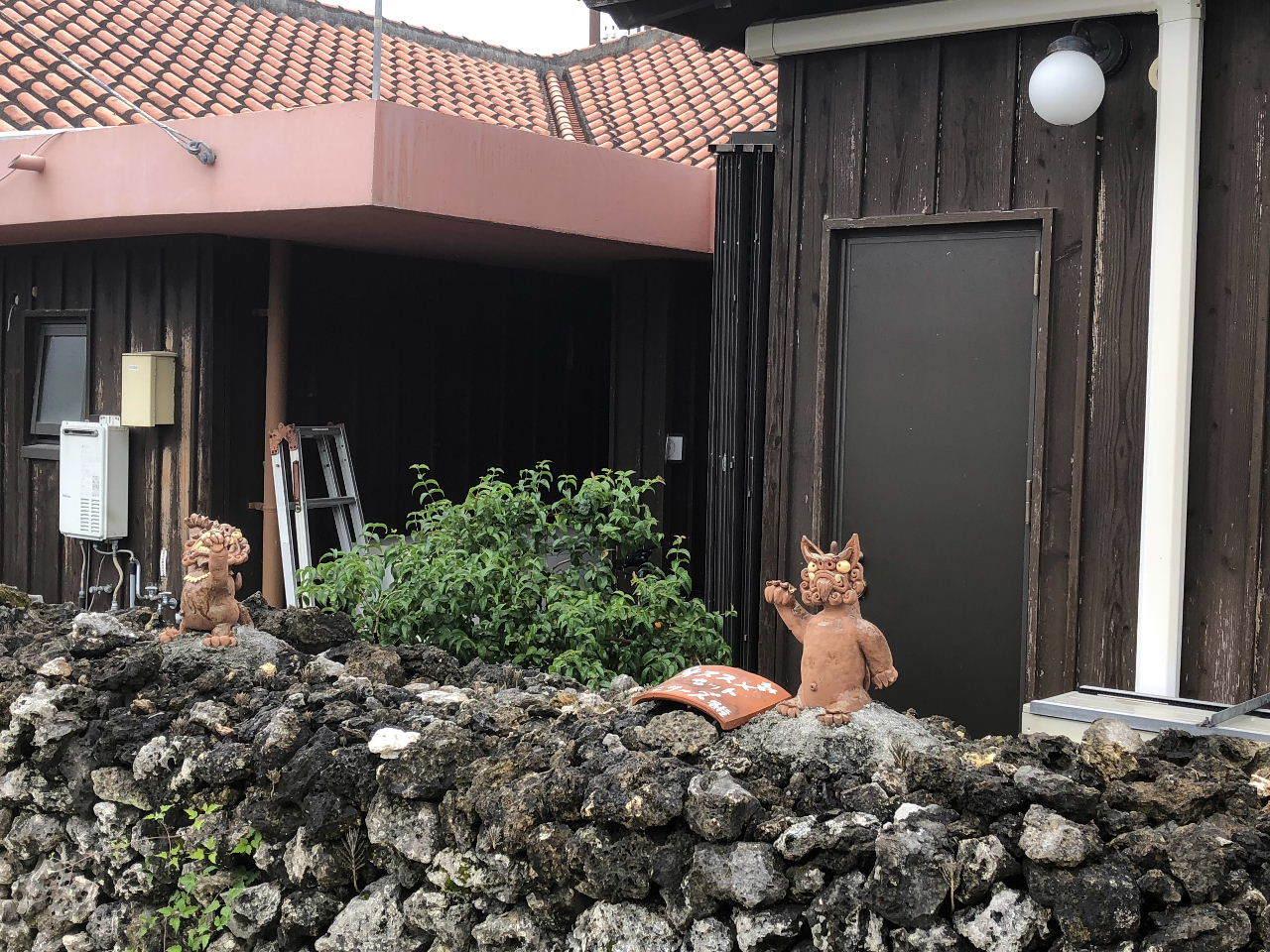 竹富島観光  水牛車でのんびり観光_c0011649_04320997.jpg