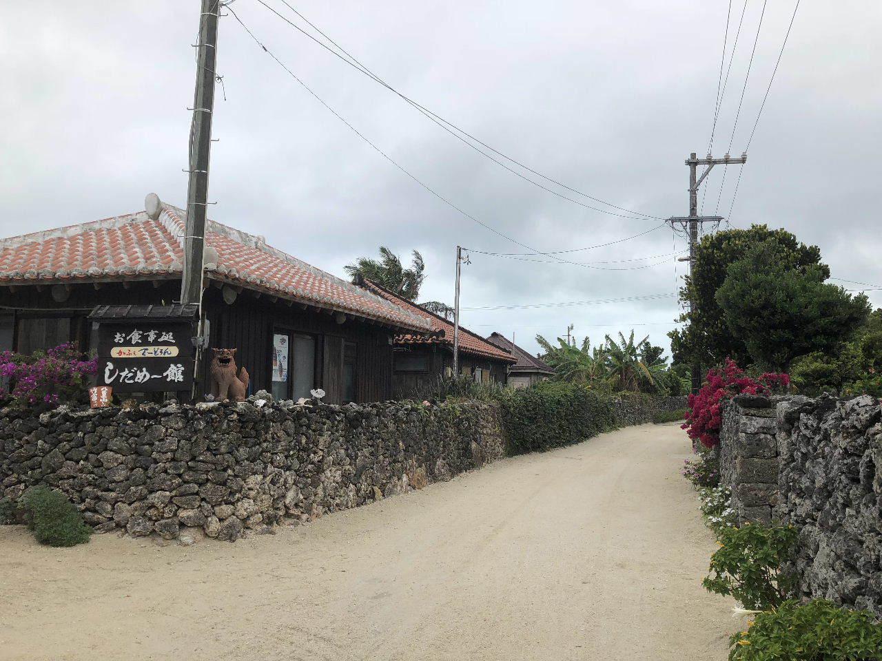 竹富島観光  水牛車でのんびり観光_c0011649_04341000.jpg