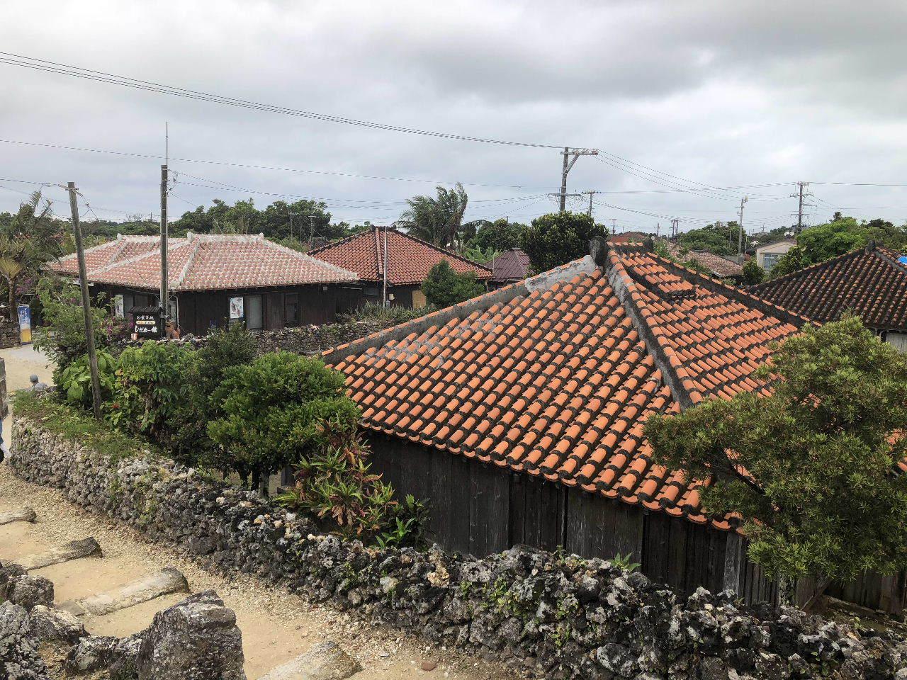 竹富島観光  水牛車でのんびり観光_c0011649_04344798.jpg