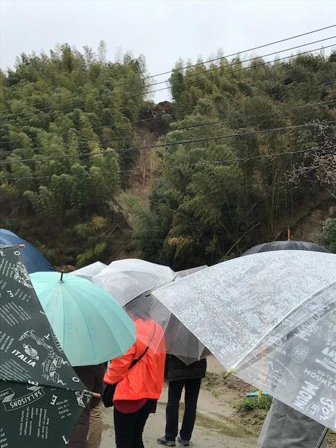 朝倉 羽野さんの博多万能ねぎ収穫体験 ~九州北部豪雨被災地視察~_b0206253_23253904.png