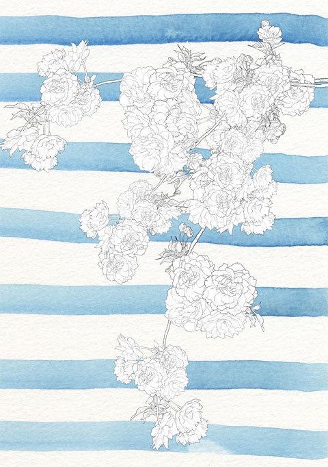 八重桜のブラシ_a0342172_02463345.jpg