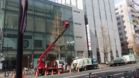 札幌の春のお化粧です。_f0362073_10453658.jpg