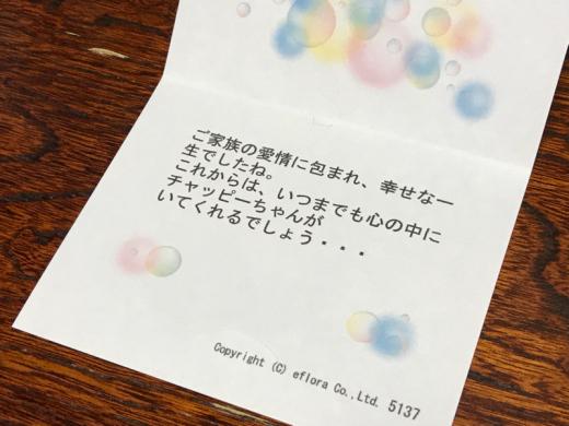 d0359388_00192002.jpg