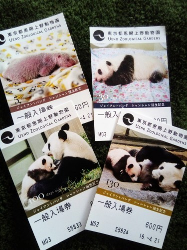 パンダを観るために_a0057402_23250525.jpg