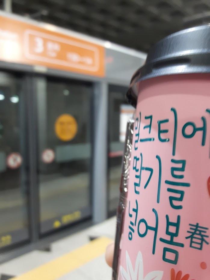 b434fb03ecbd 歩け歩けソウル : おうちに帰ろ