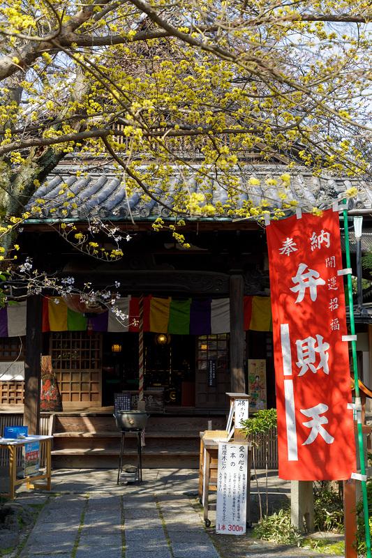 桜咲く京都2018 長建寺のしだれ桜_f0155048_0104453.jpg