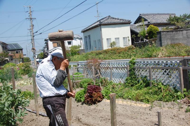 夏野菜植え付けが終った・・・我が家の菜園_c0108460_18124118.jpg