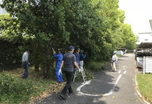 キャンパスの清掃活動は暑かった_a0346704_18450654.jpg
