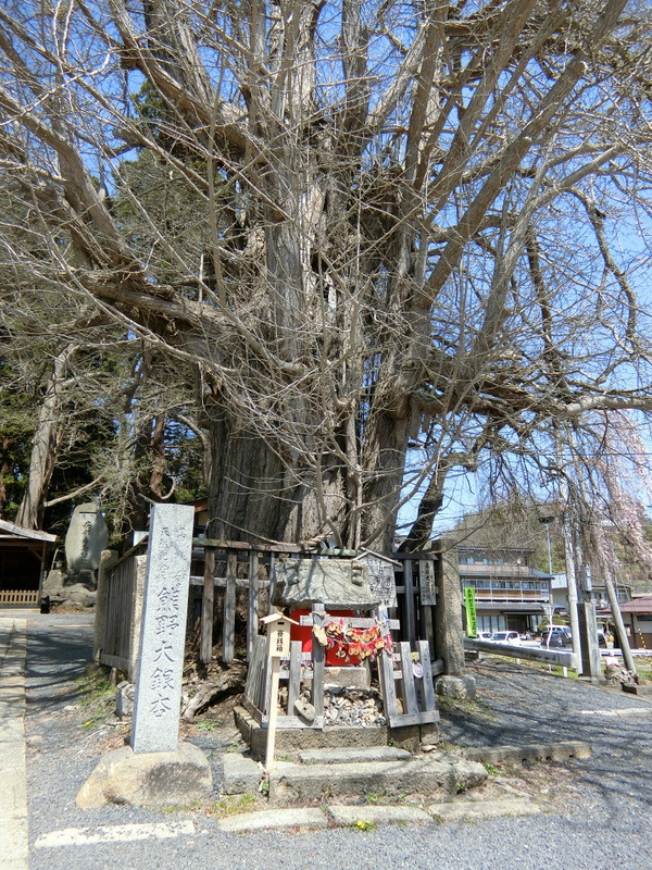 4月21日(土)東北の桜_d0278912_00010895.jpg