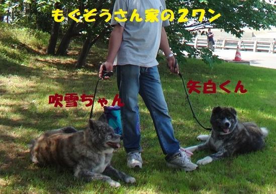 f0121712_22533606.jpg