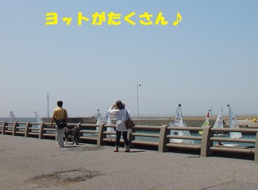 f0121712_23132802.jpg
