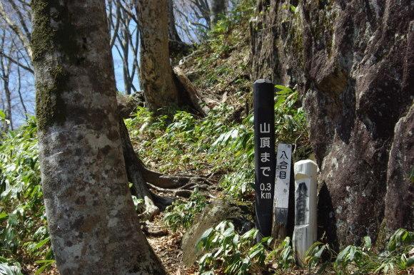 No 142  晴天の毛無山へ(2018年4月21日)_d0341514_22210197.jpg