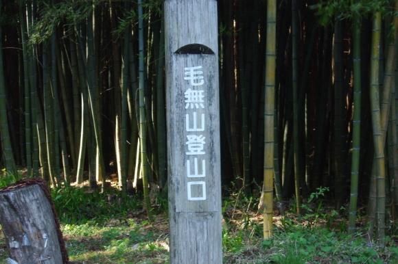 No 142  晴天の毛無山へ(2018年4月21日)_d0341514_22292086.jpg