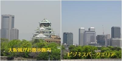 ホームパーティ & 紫陽花_a0084343_11180768.jpg
