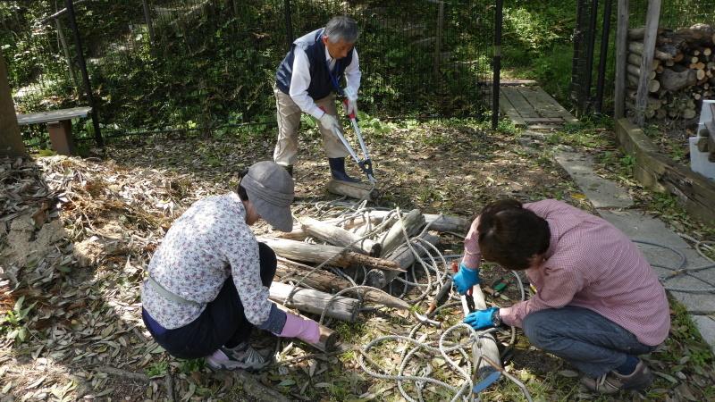 枯れヤマザクラの伐採・・・うみべの森_c0108460_18440464.jpg