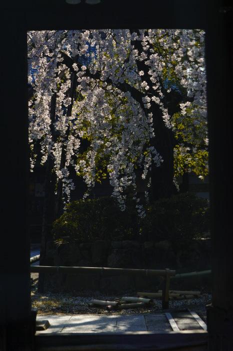 f0021869_19521551.jpg