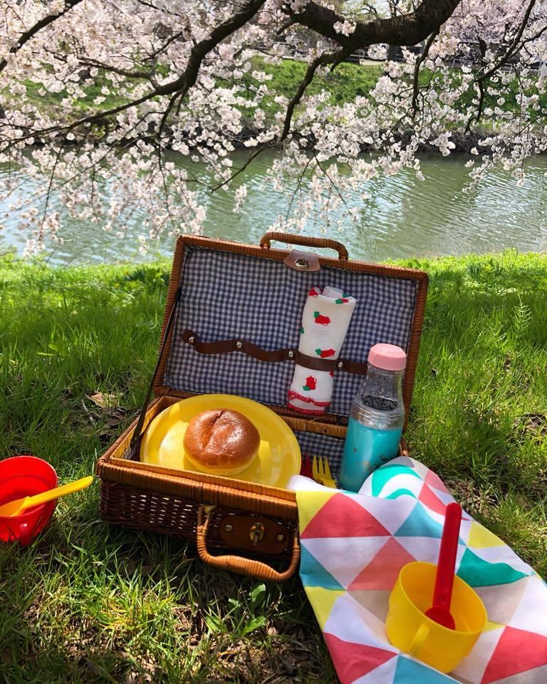 🌸桜 さくら SAKURA🌸 _e0197227_14511773.jpg