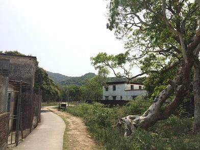 梅窩をぶらり散歩♪からの長洲島へ離島ホッピング☆Walk In Mui O and Island Hopping From Mui O to Cheung Chau_f0371533_17294183.jpg