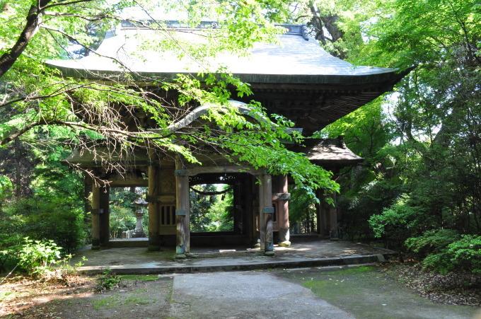 新緑の柞原八幡宮_f0191383_14501962.jpg