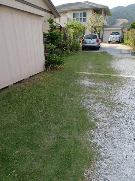 庭の草刈り_a0026295_164132100.jpg