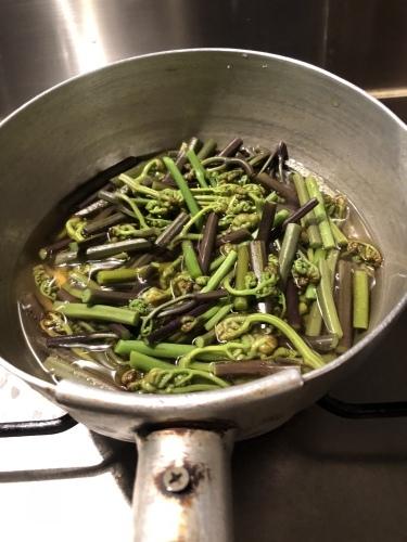 夜、蕨を煮る。_d0087595_21544978.jpeg