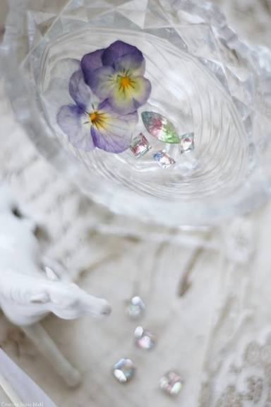 永遠の庭を夢見て_c0203401_14332971.jpg