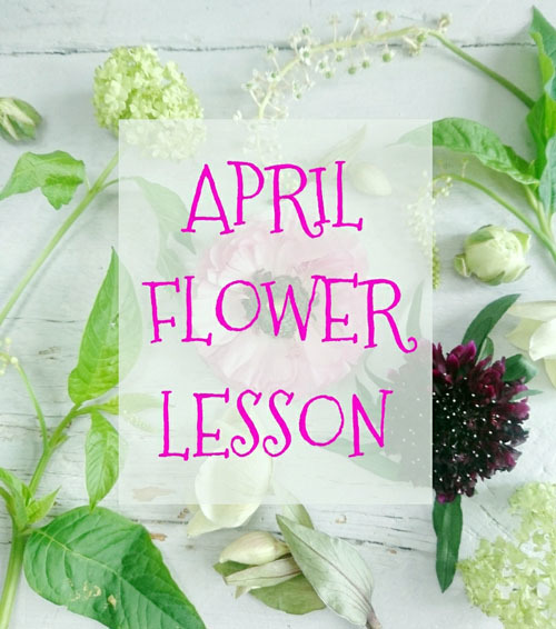 4月レッスンスケジュール Lesson Schedule-Apr _FELICE_f0134809_16202549.jpg