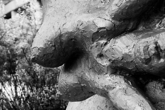 Body    ・・・井の頭自然文化園・・・_f0333031_05054397.jpg