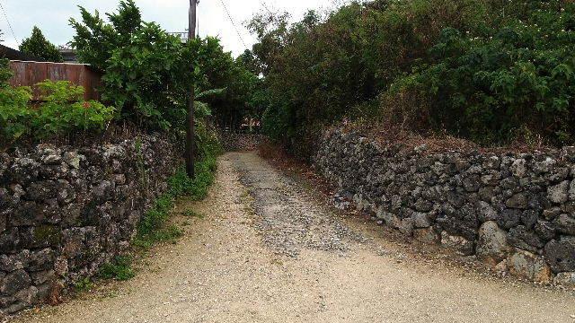 竹富島観光(2) 水牛車でのんびり観光、そして星砂の浜_c0011649_13125985.jpg