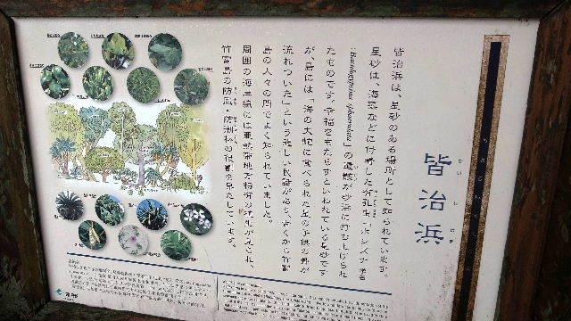 竹富島観光(2) 水牛車でのんびり観光、そして星砂の浜_c0011649_13225272.jpg