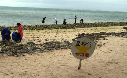 竹富島観光(2) 水牛車でのんびり観光、そして星砂の浜_c0011649_13254094.jpg
