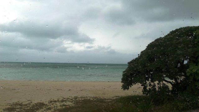竹富島観光(2) 水牛車でのんびり観光、そして星砂の浜_c0011649_13270508.jpg