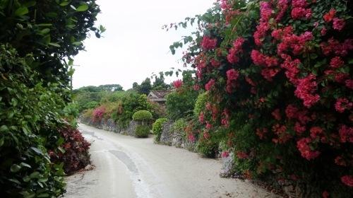 竹富島観光(2) 水牛車でのんびり観光、そして星砂の浜_c0011649_13285065.jpg