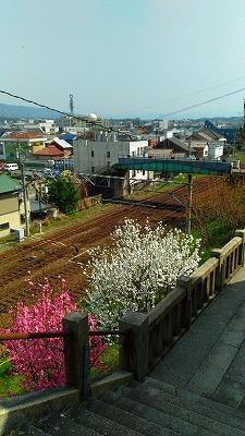 石炭の記念館を訪ねて その1(福岡県直方市)_e0173350_23060669.jpg