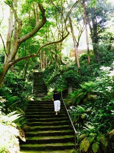 新緑の鎌倉へ。オトナの遠足第2弾。_f0074254_01530610.jpeg