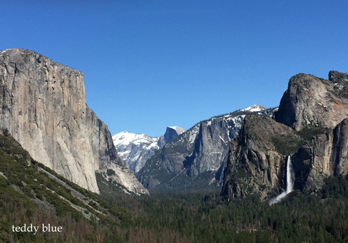 Spring Break in Yosemite スプリングブレイク in ヨセミテ_e0253364_17362877.jpg