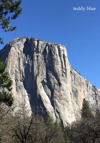 Spring Break in Yosemite スプリングブレイク in ヨセミテ_e0253364_17374589.jpg