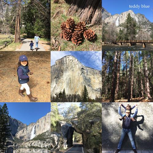 Spring Break in Yosemite スプリングブレイク in ヨセミテ_e0253364_17383216.jpg