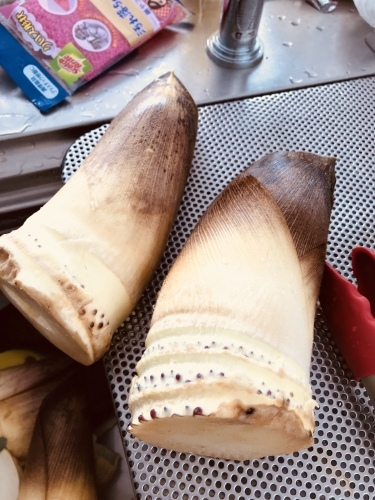 Love the bamboo shoot._c0153966_09154638.jpeg