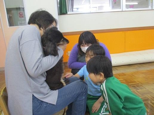 ゆり組 動物触れ合い教室_c0212598_18020273.jpg