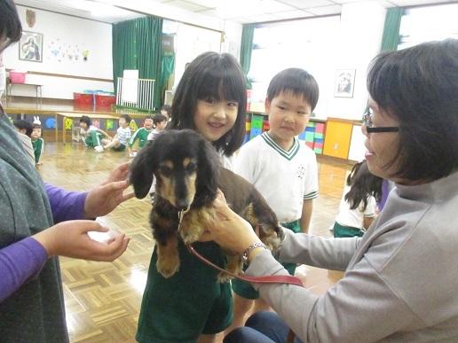 ゆり組 動物触れ合い教室_c0212598_18020529.jpg