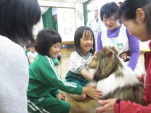 ゆり組 動物触れ合い教室_c0212598_18021966.jpg