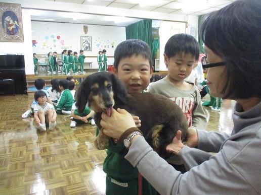ゆり組 動物触れ合い教室_c0212598_18022519.jpg