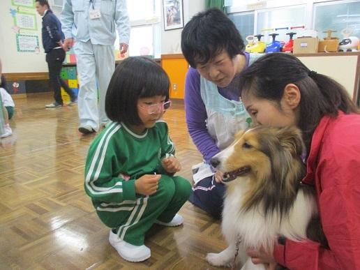 ゆり組 動物触れ合い教室_c0212598_18022802.jpg
