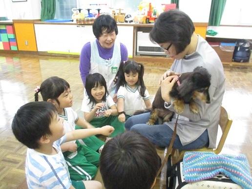 ゆり組 動物触れ合い教室_c0212598_18023399.jpg